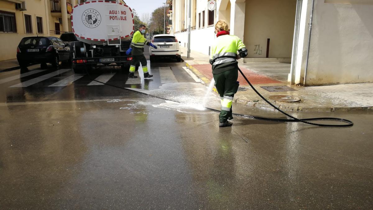 Tareas de limpieza en Paterna