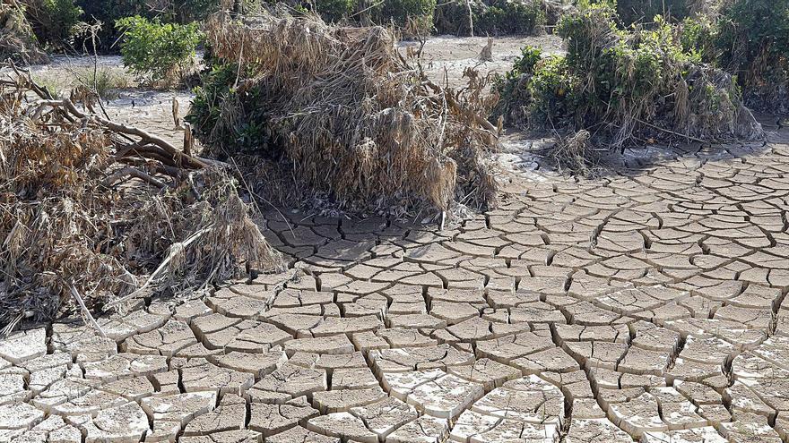 Garantizar el agua, el gran reto frente al cambio climático