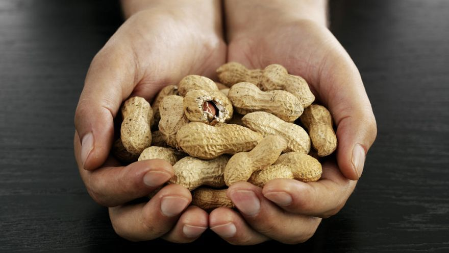 Un estudi afirma que els fruits secs prevenen malalties cardiovasculars i no engreixen