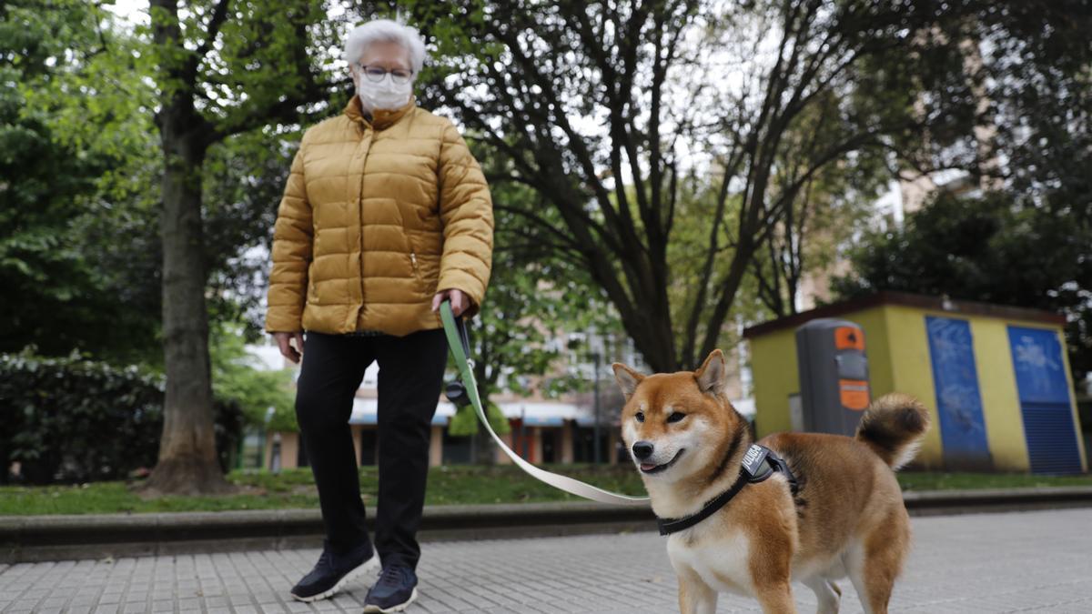 Los dueños de perros piden vallas en las zonas para los animales