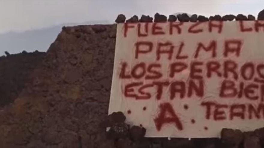 La empresa de drones constata que no hay rastro de los perros aislados por el volcán de La Palma