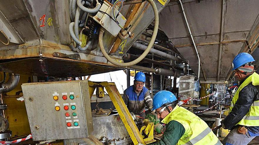 Ence invirtió 132 millones en tareas de compromiso ambiental
