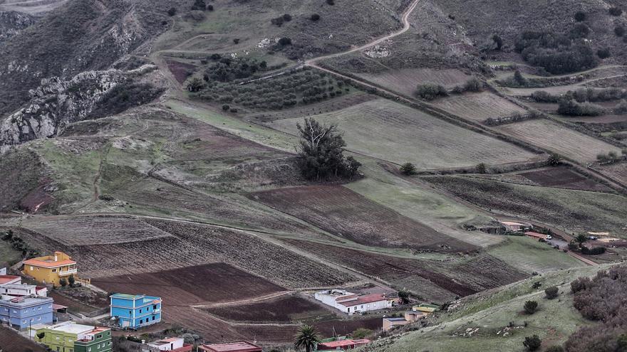 El Consistorio anima a dueños de tierras en desuso a cederlas para su cultivo
