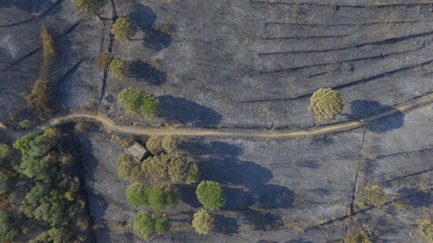 Les 415 hectàrees cremades entre Llançà i Port de la Selva a vista de dron