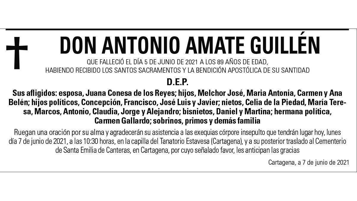 D. Antonio Amate Guillén