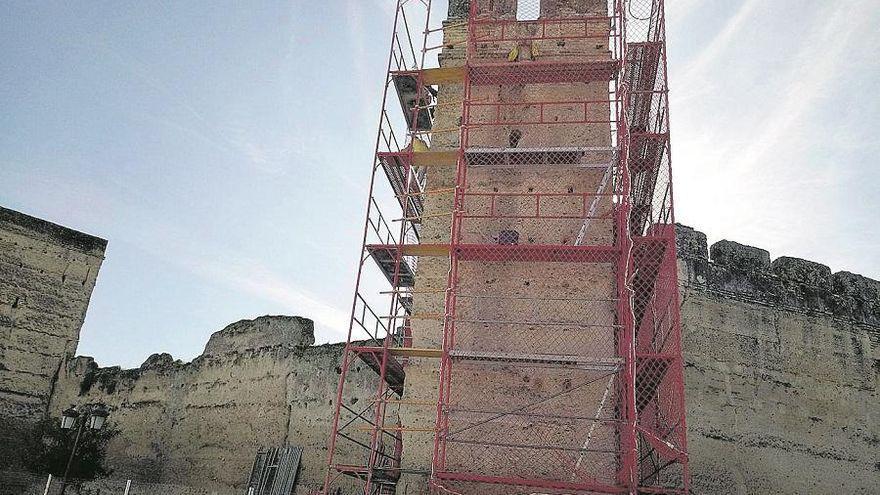 Cultura respalda la limpieza y mantenimiento de los torreones y recinto amurallado de Palma del Río