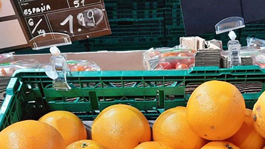 La masiva llegada de cítricos de Sudáfrica paraliza las ventas en el campo valenciano