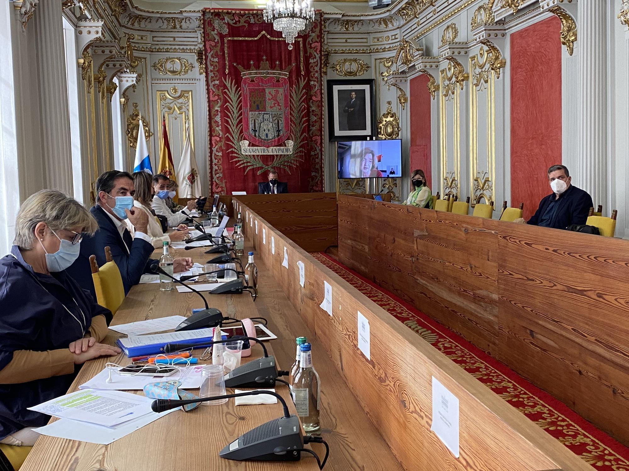 Pleno del Ayuntamiento de Las Palmas de Gran Canaria (26/03/2021)