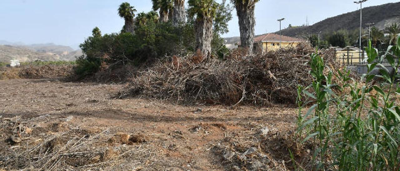 El Sur concentra el suelo para construir 20 viviendas públicas en El Pajar