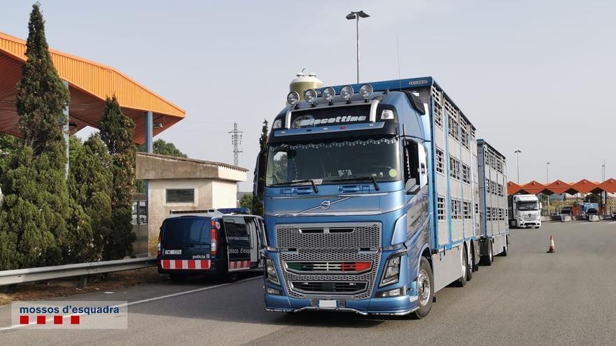 Detenen un camioner a Figueres per circular amb la targeta de conductor del tacògraf digital d'una altra persona