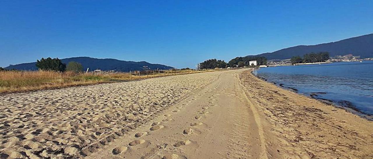 Vista de la playa de Cesantes ayer por la mañana, ya sin algas.     // FDV