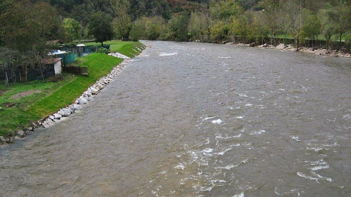 El resultado de las obras ejecutadas por la Confederación Hidrográfica en La Chalana.   CHC