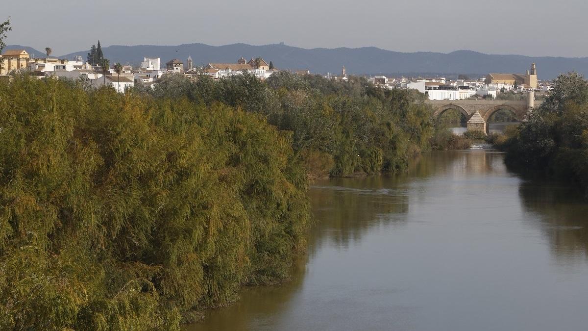 Vox vuelve a exigir la limpieza del río a su paso por Córdoba