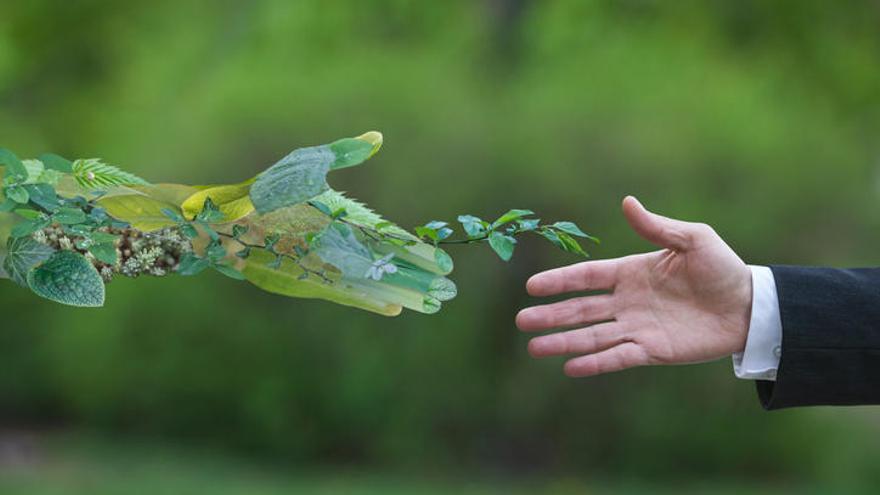 Objetivos de Desarrollo Sostenible: Compromiso real