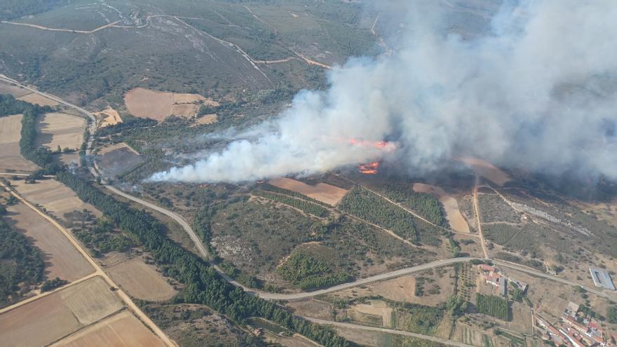 Declarado de nivel 1 un incendio forestal en Carracedo de Vidriales