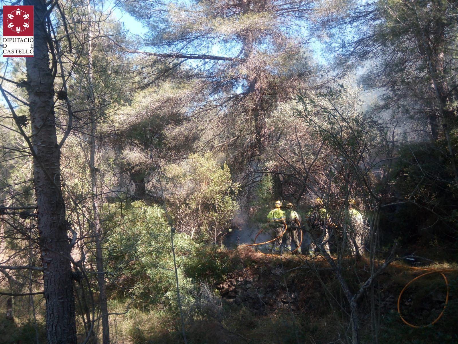 Fotos del incendio forestal en Sant Joan de Moró