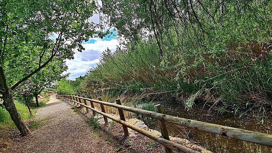 Reparación del vallado del paseo del río Huecha
