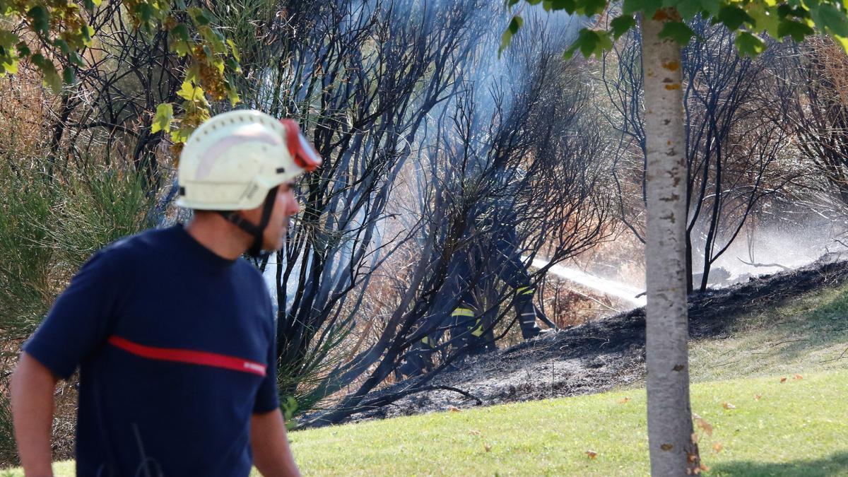 Un fuego en la provincia de Zamora.