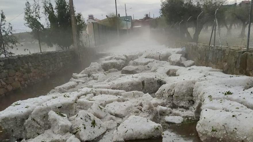 Una tormenta de granizo arrasa con los olivares y la dehesa de Valdelacasa de Tajo