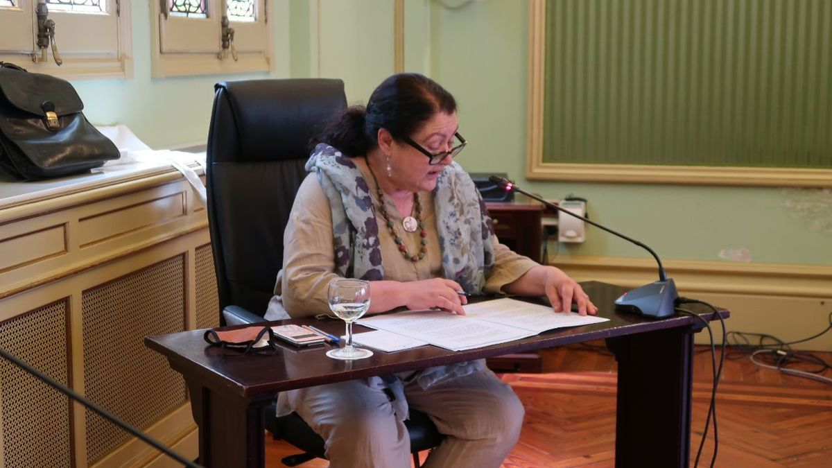 La consellera Mae de la Concha, durante su comparecencia en el Parlament.