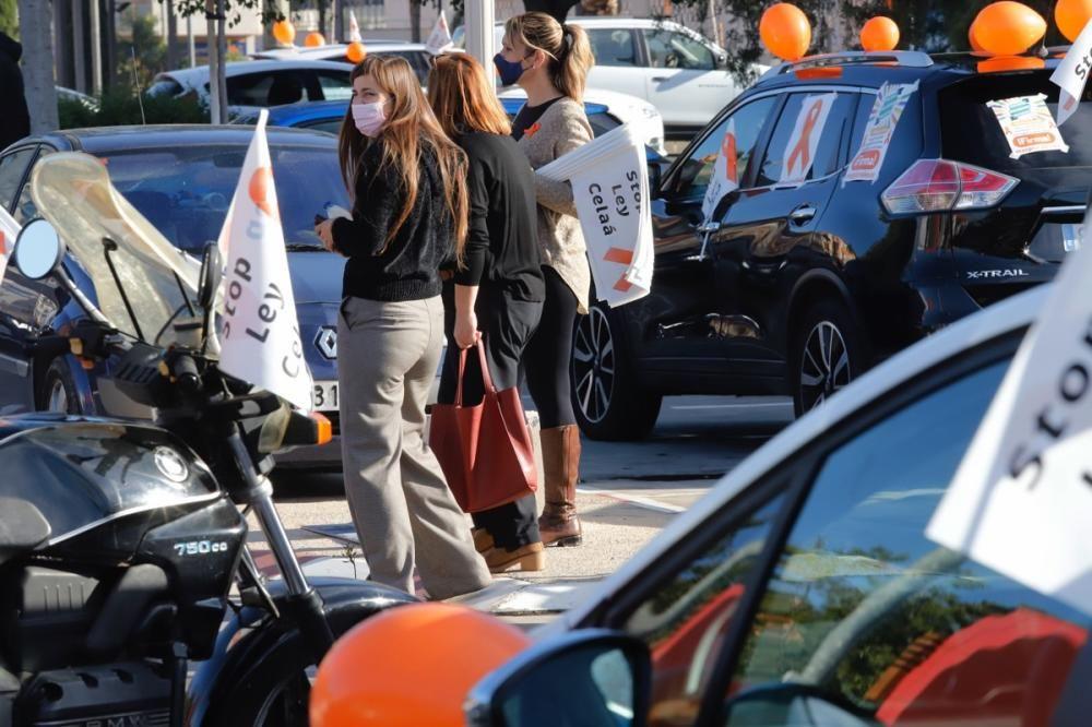 El centro de Murcia vuelve a llenarse de vehículos para protestar contra la Ley Celaá