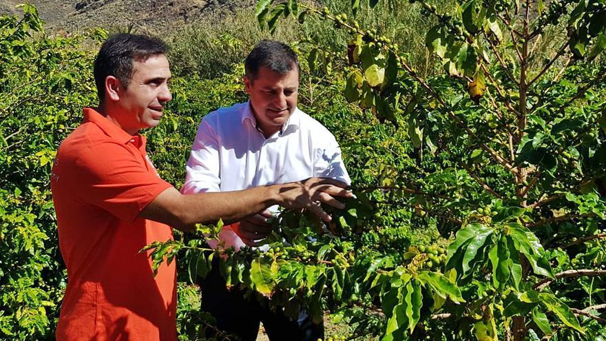 Los hermanos Roca buscan a los mejores productores sostenibles del país