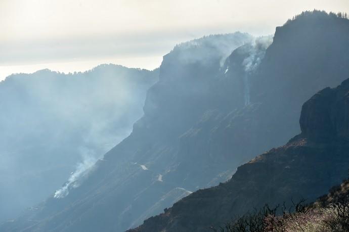 10-08-2019 ARTENARA. Incendio en la cumbre de Gran Canaria  | 10/08/2019 | Fotógrafo: Andrés Cruz