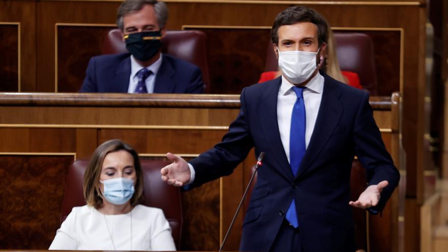 """Casado a Sánchez: """"Deje de meter la cabeza en el suelo como una avestruz porque su empecinamiento cuesta vidas"""""""