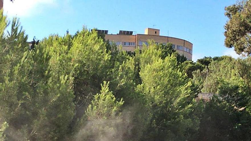 Retiran 35.000 kilos de basura de una pinada para evitar incendios