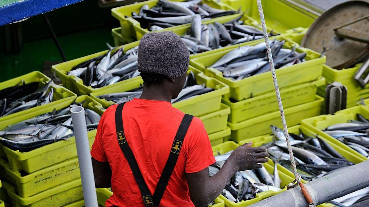 Un barco del cantábrico lleno de caballa durante la campaña.   @EKOGARAPENA