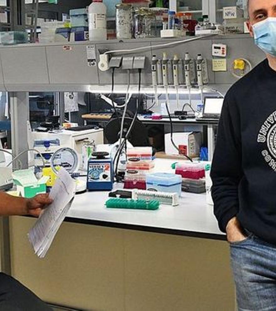 Un estudio revela la 'cara oculta' del genoma humano y abre una nueva era en la medicina