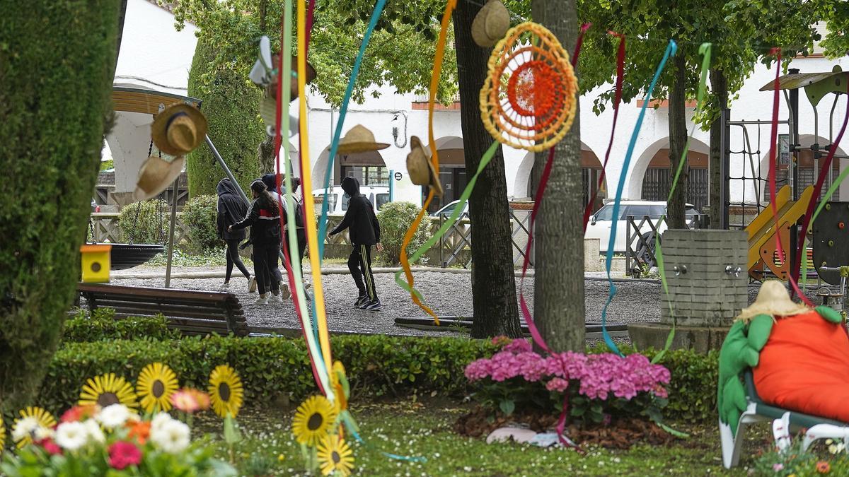 Temps de flors als barris