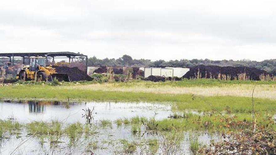 El Consell sigue con su plan de cerrar la planta de compostaje