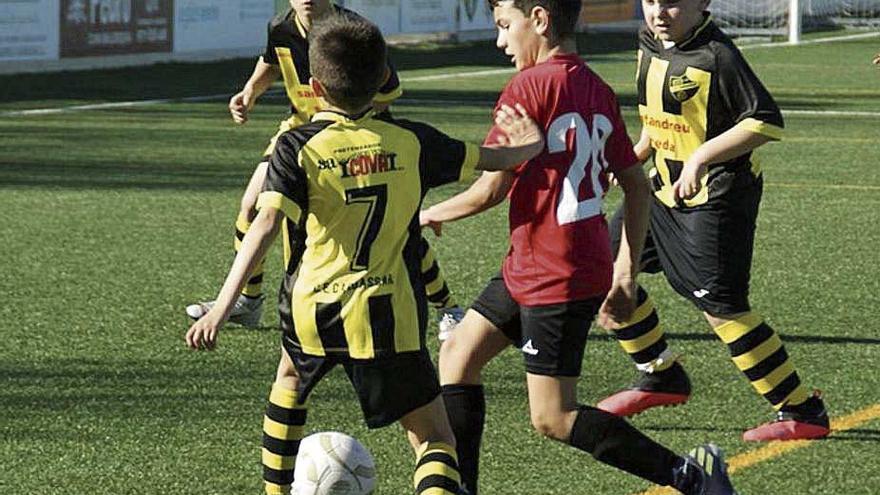 El límite de edad de 12 años impuesto por el Govern genera dudas en los clubes