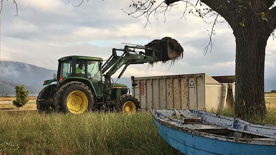 Rivas asegura que la recogida de algas en las playas se realiza solo de forma manual
