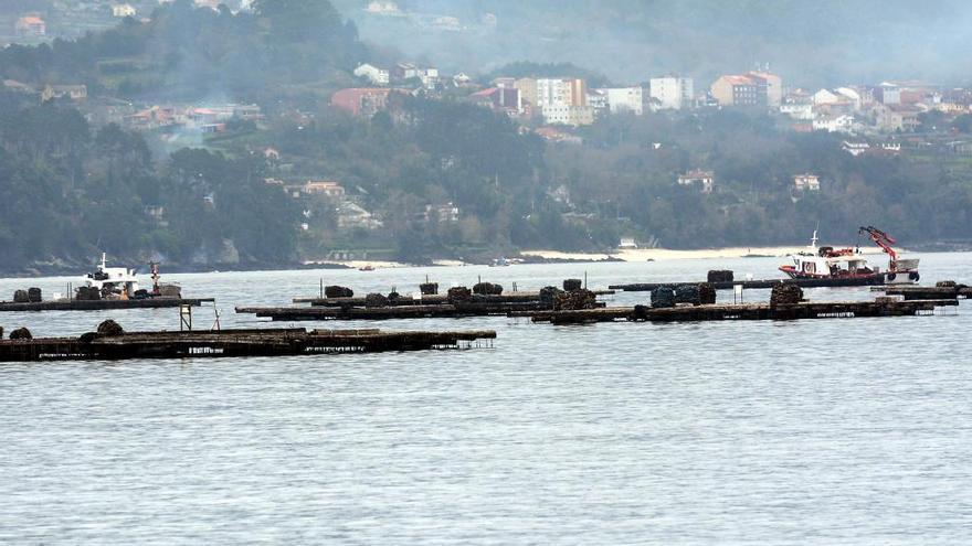 La señalización de las bateas de la ría de Pontevedra se testará en la de Muros-Noia