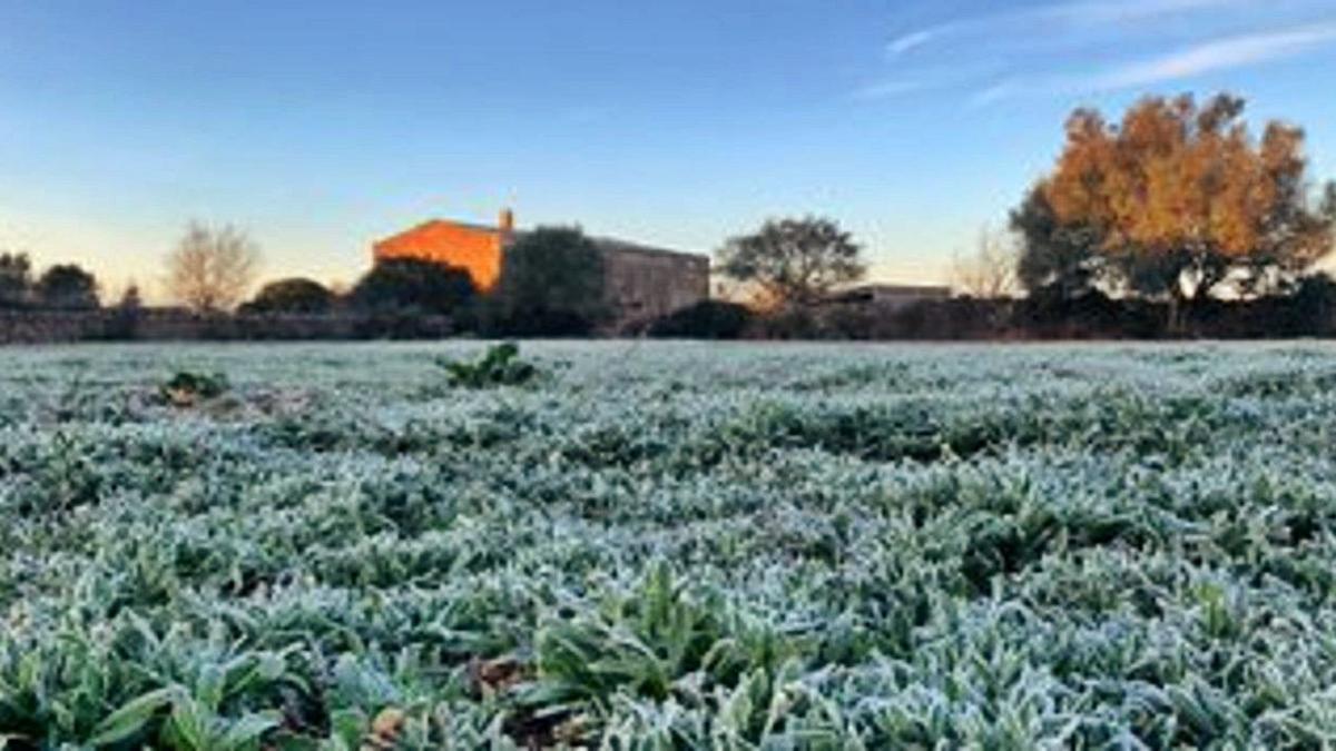 Mallorca registra las primeras heladas del invierno