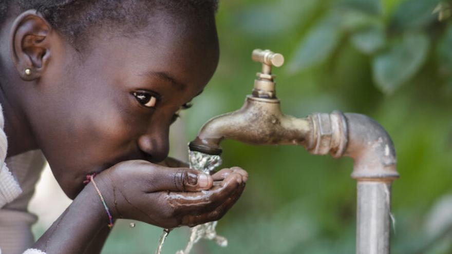 Descubren un método natural para descontaminar el agua