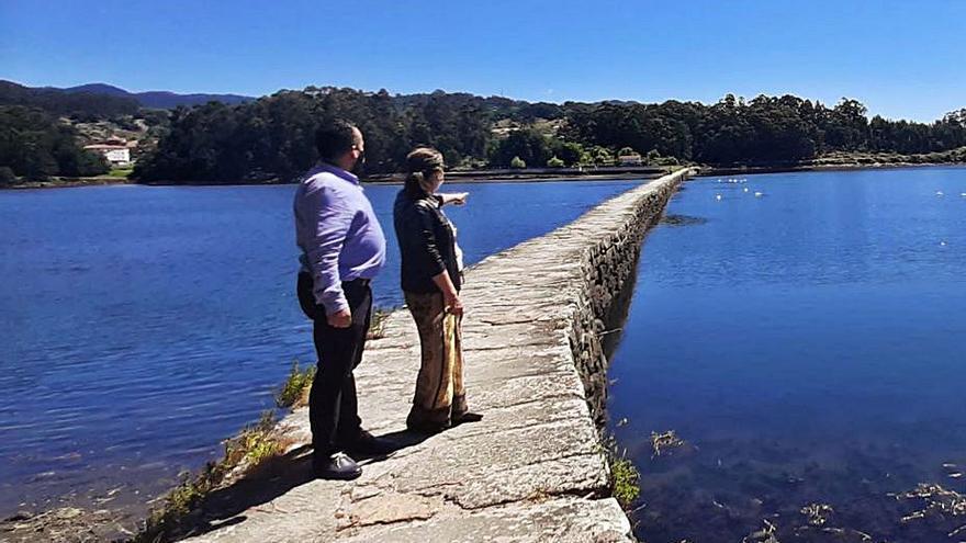El Día Mundial del Medio Ambiente ofrece un amplio abanico de actividades en la comarca
