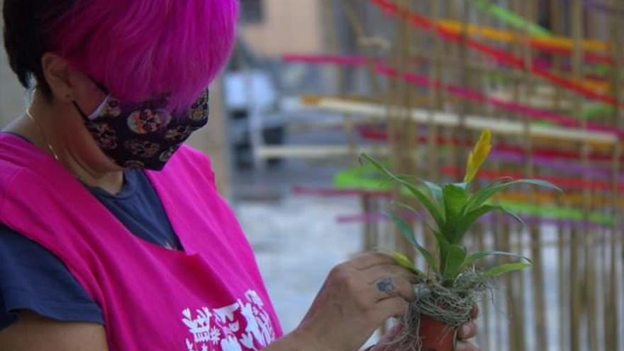 """Las floristerías temen una """"hecatombe"""" si falla la campaña de Todos los Santos"""