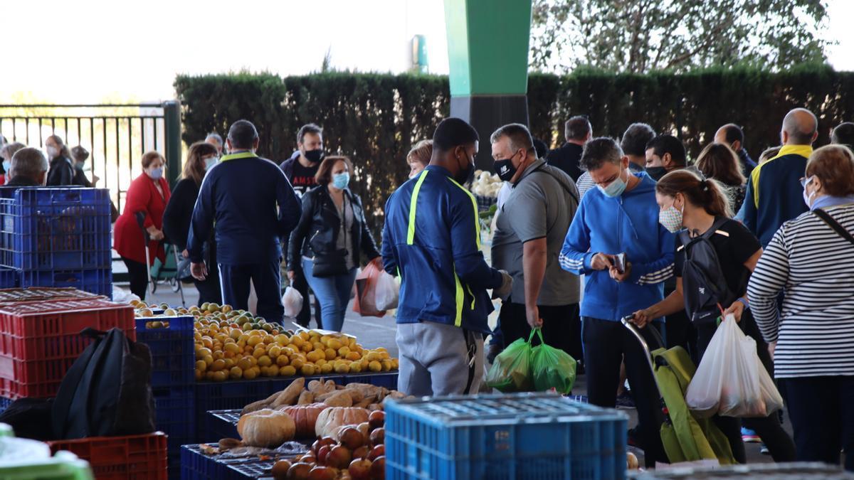 Mercado del Lunes de Castelló.