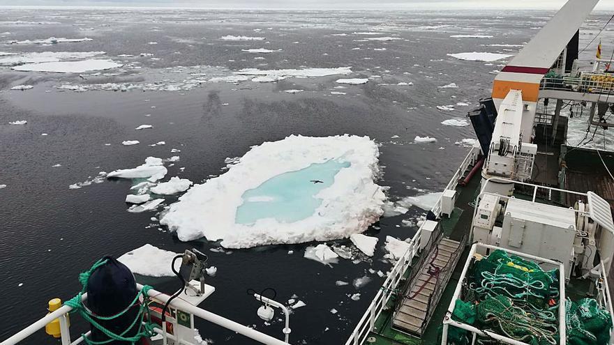La relación pesquera con Noruega explota: se apropia de más de un tercio de la caballa