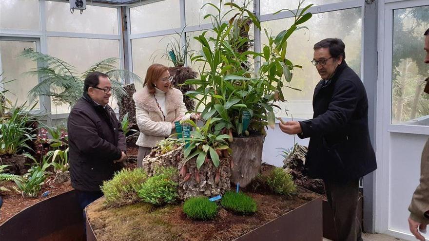 El Jardín Botánico inaugura un orquidario con 30 especies diferentes