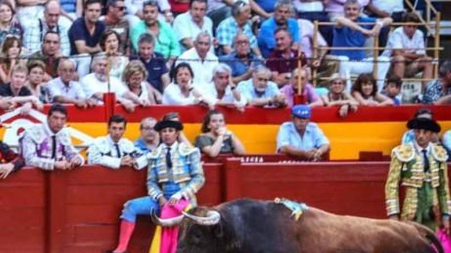 Streit um einen nicht stattfindenden Stierkampf in Muro
