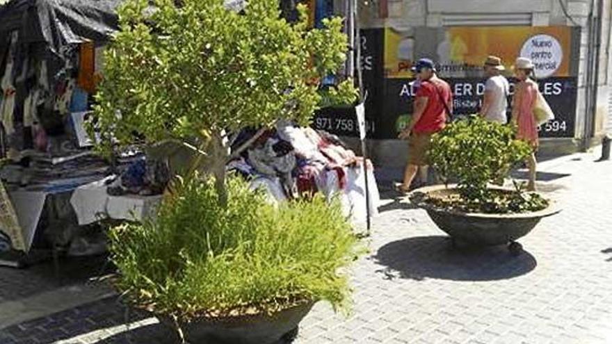 Barrieren gegen Attentate: Inca schützt Wochenmarkt mit Blumenkübeln