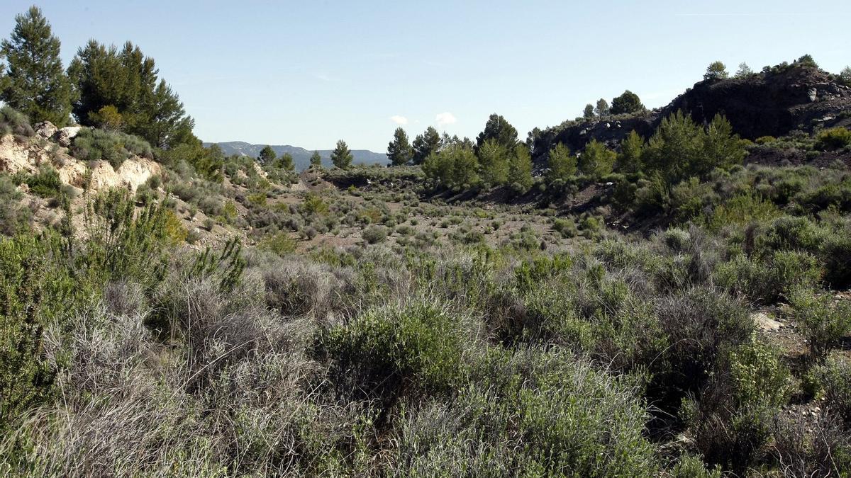 Así es el cráter del volcán de Cofrentes.