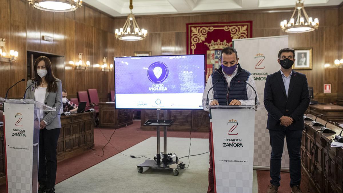 Presentación del punto violeta en la Diputación