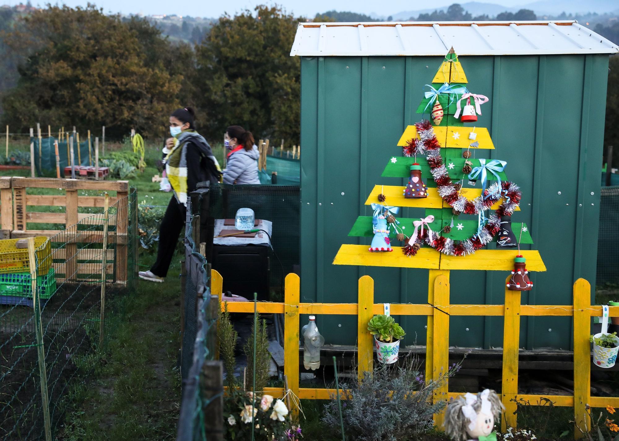 Los Huertos de Cabue�es, jardines de ilusi�n en Navidad (2).jpg