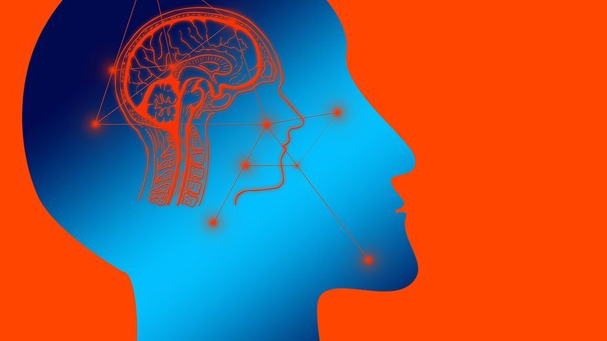 El eje intestino-cerebro deviene arma de guerra