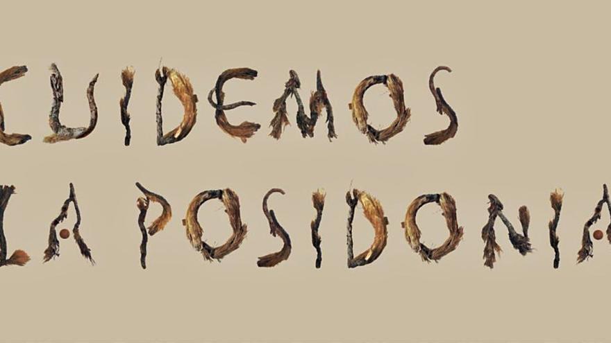 Letras para proteger las praderas de posidonia